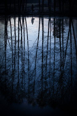 Natasza Fiedotjew silhouettes of bare trees and woman reflected in lake