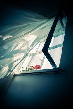 Natasza Fiedotjew open window with billowing curtain