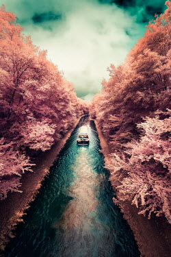 David Keochkerian BARGE ON CANAL WITH TREES