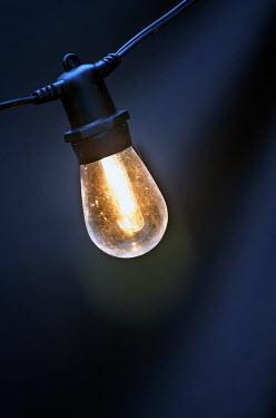 Adrian Muttitt single glowing festoon bulb