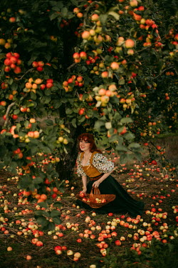 Rebecca Stice WOMAN KNEELING UNDER TREE COLLECTING APPLES