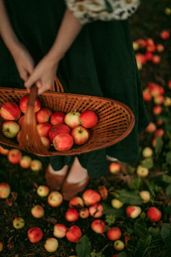 Rebecca Stice WOMAN HOLDING BASKET WITH APPLES