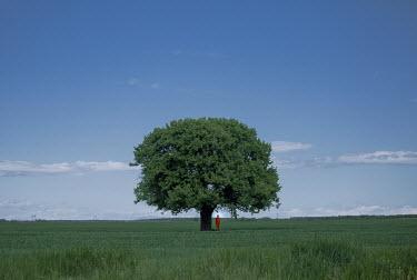 Felicia Simion Woman in red bodysuit under tree in field