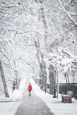 Evelina Kremsdorf Woman in red coat walking in park during winter, Brooklyn, New York