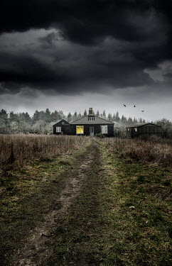 Stephen Mulcahey Rural road and house