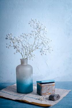 Magdalena Wasiczek White flowers in vase