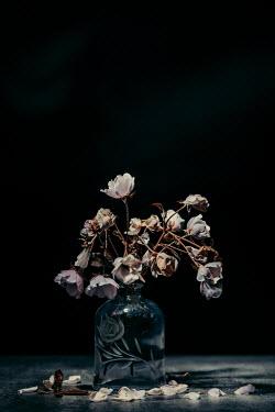 Magdalena Russocka bouquet of broken roses with fallen petals