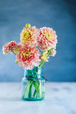Stephanie Frey YELLOW AND PINK FLOWERS IN GLASS JAR