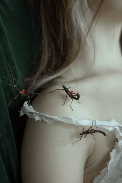 Daria Amaranth INSECTS CRAWLING OVER FEMALE SHOULDER
