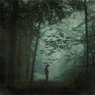 Dirk Wustenhagen MAN IN HOOD STANDING IN FOREST