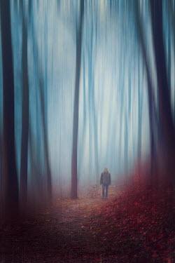 Dirk Wustenhagen MAN WALKING ON FOREST PATH IN AUTUMN