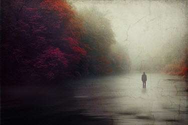 Dirk Wustenhagen SILHOUETTED MAN STANDING IN RIVER WITH AUTUMN TREES
