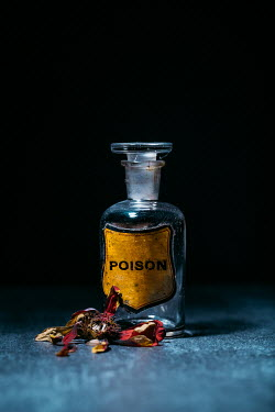 Magdalena Russocka bottle of poison and withered flower on table
