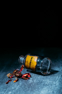 Magdalena Russocka knocked over bottle of poison and withered flower on table