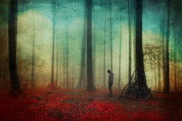 Dirk Wustenhagen MAN STANDING IN MISTY AUTUMN FOREST