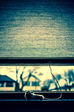 Magdalena Russocka view of next door suburban houses through window with slightly raised blind