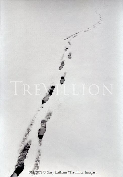 Gary Latham Snow/ Ice