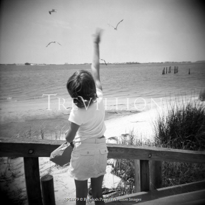 Rebekah Pope GIRL FEEDING BIRDS ON BEACH Children