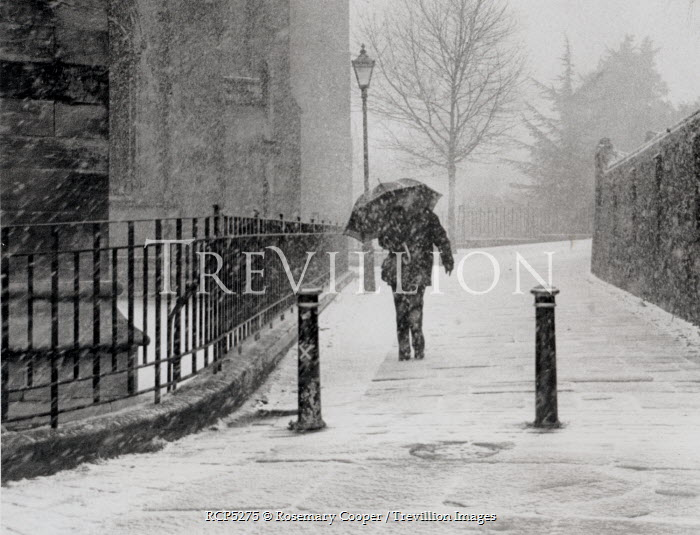 Rosemary Cooper WOMAN WALKING ON SNOWY SIDEWALK Men