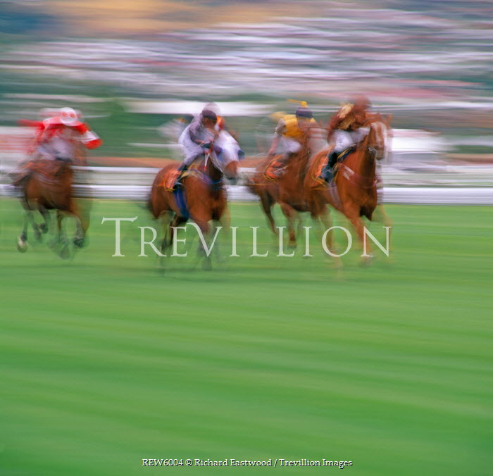 Richard Eastwood HORSES IN RACE Groups/Crowds