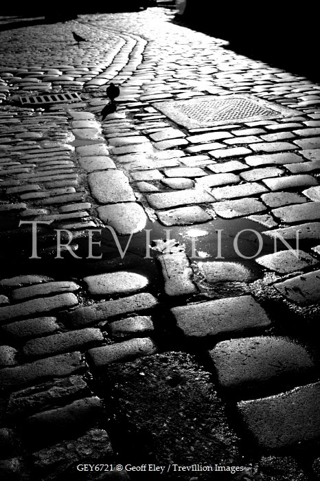 Geoff Eley COBBLED ROAD Streets/Alleys