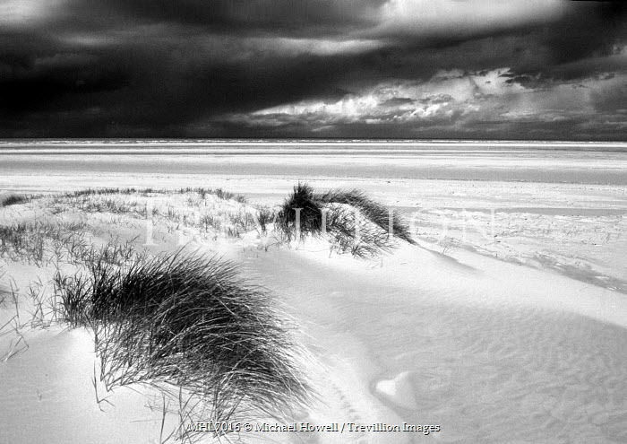 Michael Howell Seascapes/Beaches