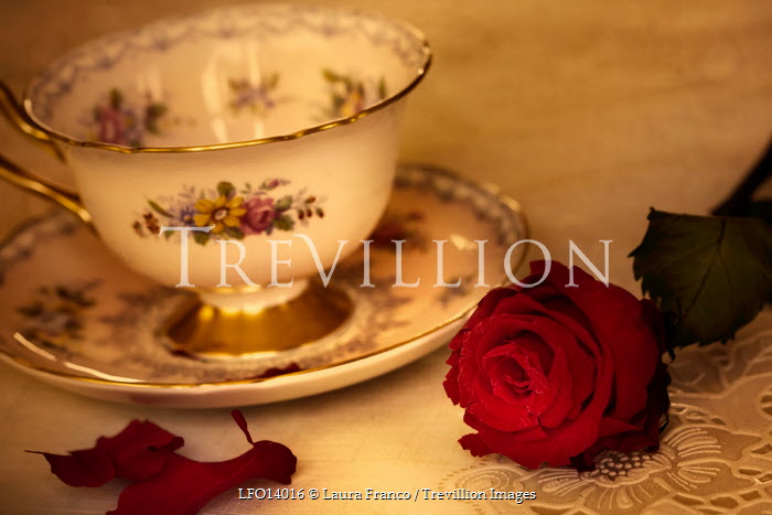 Laura Franco ROSE AND TEACUP Miscellaneous Objects