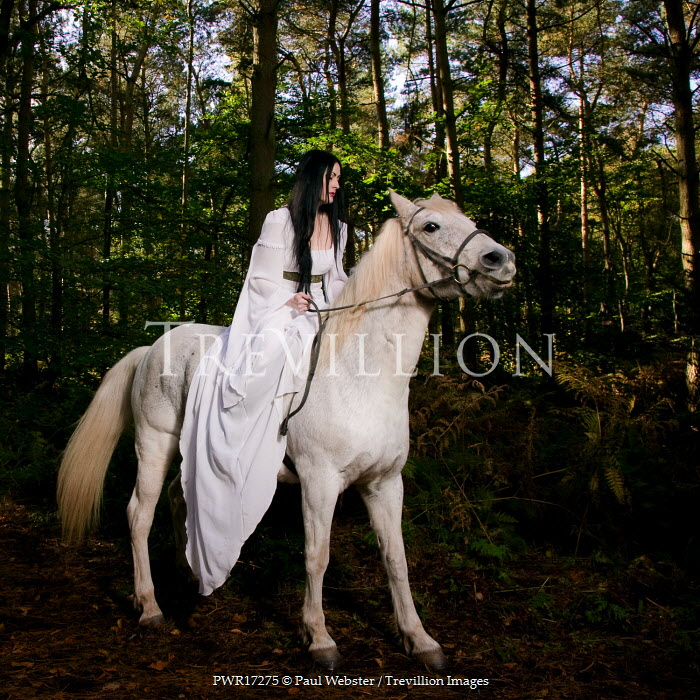 Paul Webster WOMAN RIDING WHITE HORSE FOREST Women