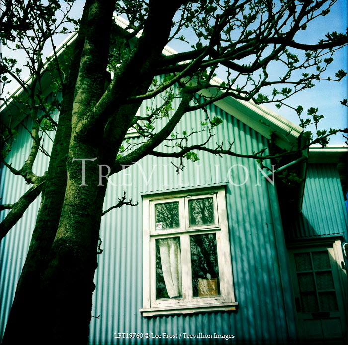 Lee Frost CORRUGATED IRON HOUSE WITH TREE Houses