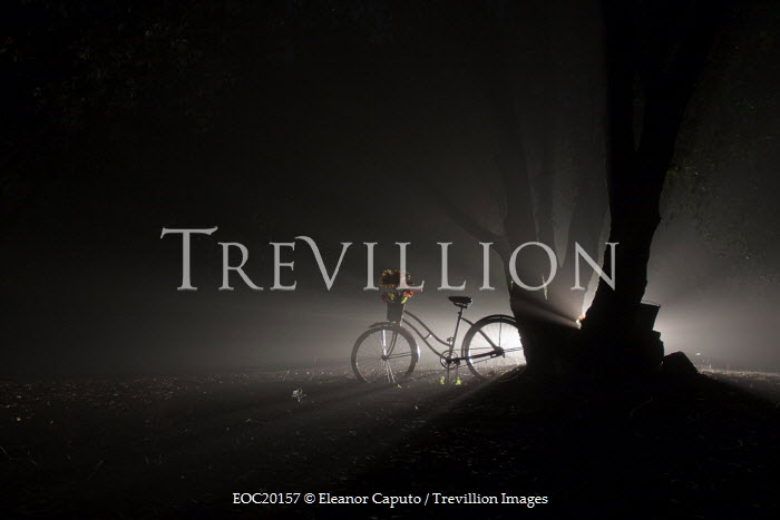 Eleanor Caputo BICYCLE BY TREE AT NIGHT Miscellaneous Transport