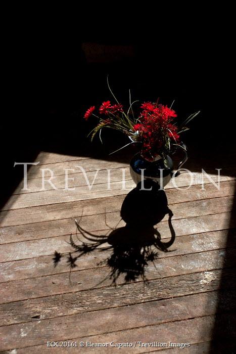 Eleanor Caputo flowers in jug outside on table Flowers/Plants