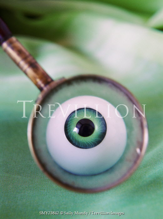 Sally Mundy FALSE EYE UNDER MAGNIFYING GLASS Miscellaneous Objects