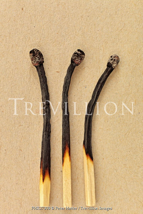 Peter Hatter THREE BURNT MATCHES Miscellaneous Objects