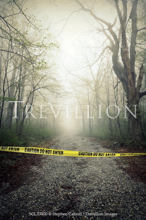Stephen Carroll CRIME SCENE IN COUNTRY LANE Roads