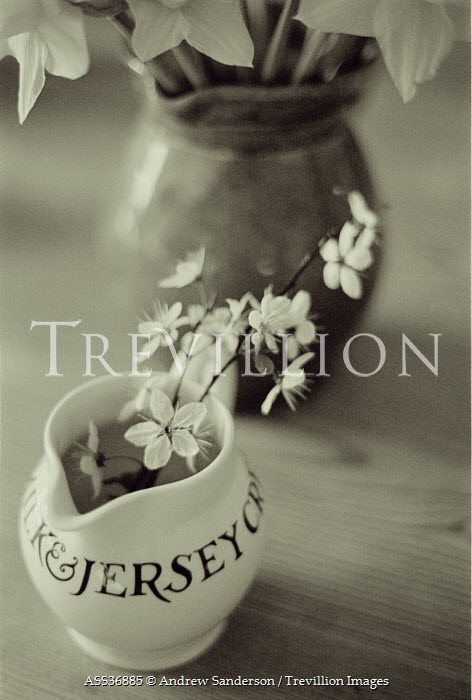 Andrew Sanderson TWO JUGS WITH FLOWERS Miscellaneous Objects