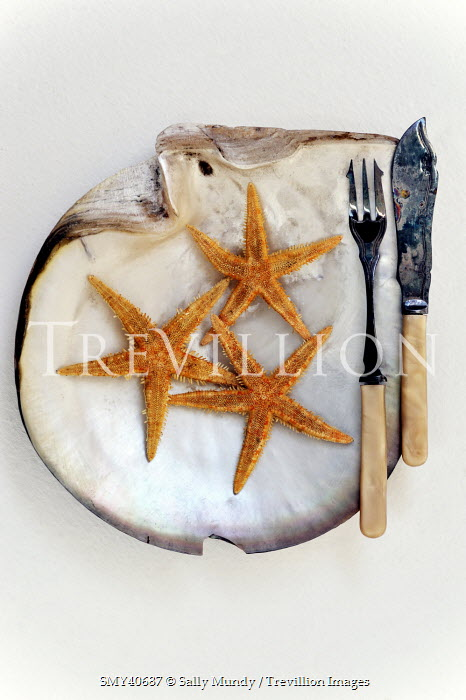 Sally Mundy STARFISH IN SHELL WITH CUTLERY Miscellaneous Objects