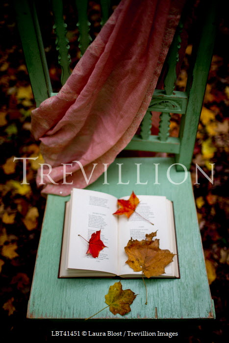 Laura Blost CHAIR OUTSIDE WITH BOOK SCARF AND LEAVES Miscellaneous Objects