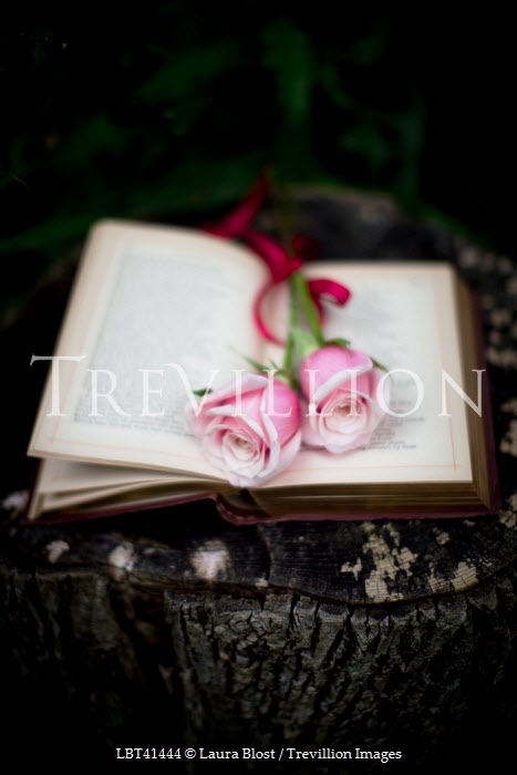 Laura Blost BOOK WITH ROSES Miscellaneous Objects
