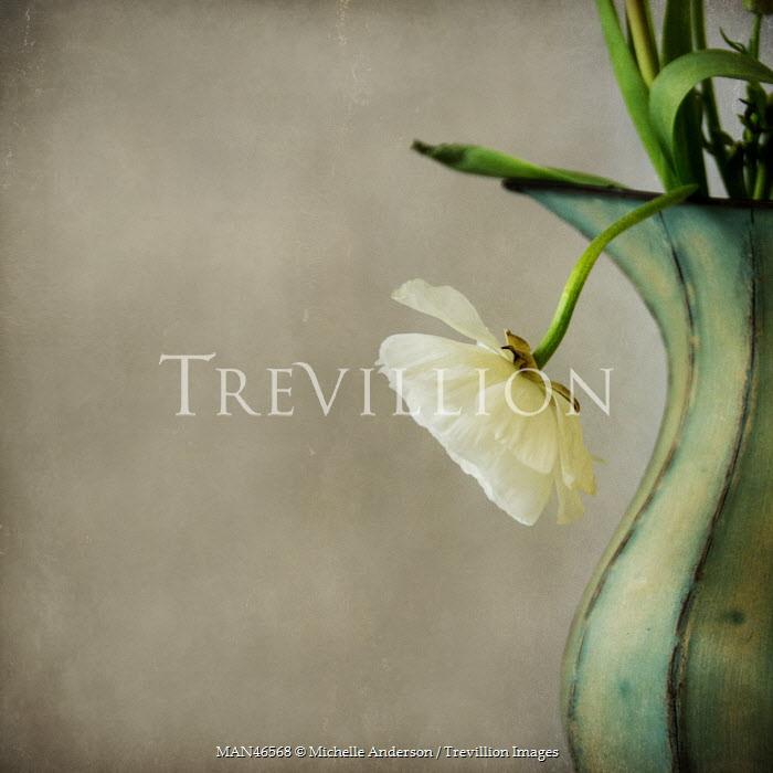 Michelle Anderson DROOPING FLOWER IN VASE Flowers