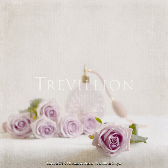 Michelle Anderson PINK ROSES WITH PERFUME BOTTLE Flowers