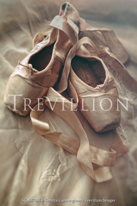 Sandra Cunningham OLD WORN BALLET SHOES Miscellaneous Objects