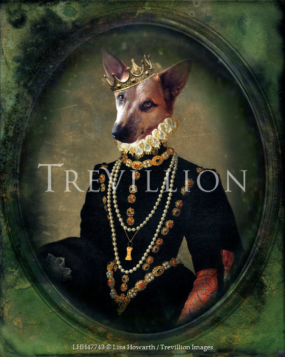 Lisa Howarth DOG IN ROYAL COSTUME Animals