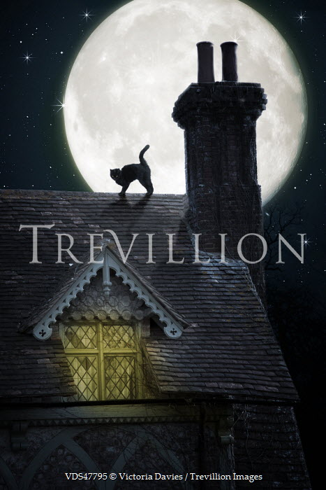 Victoria Davies CAT ON ROOF OF COTTAGE WITH MOON BEHIND Houses