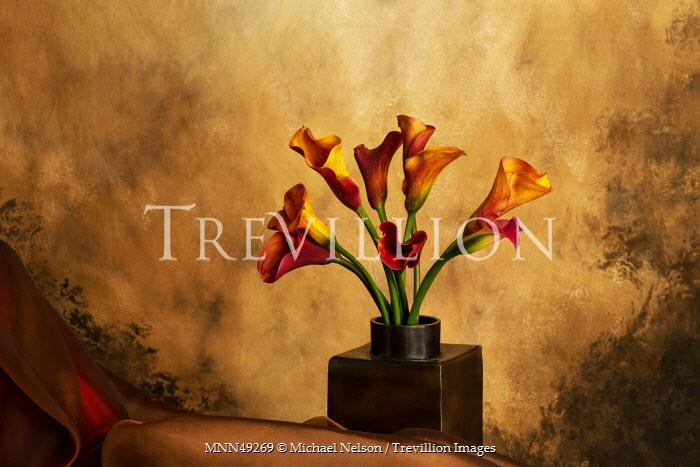 Michael Nelson FLOWERS IN VASE Flowers