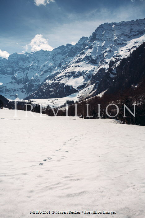 Maren Becker FOOTPRINTS BY SNOWY MOUNTAINS Snow/ Ice