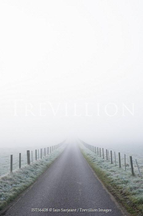 Iain Sarjeant MISTY COUNTRY ROAD Paths/Tracks