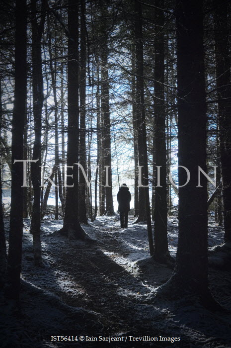 Iain Sarjeant WOMAN IN SNOWY FOREST Women