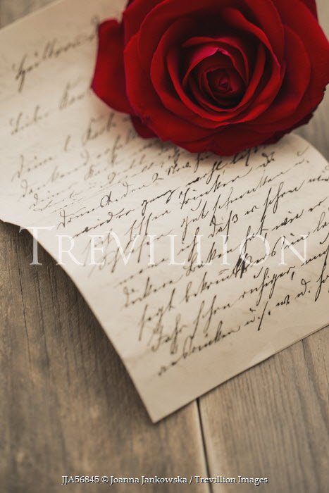 Joanna Jankowska RED ROSE WITH LOVE LETTER Miscellaneous Objects