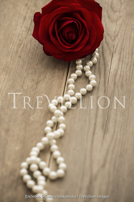 Joanna Jankowska RED ROSE AND PEARL NECKLACE Miscellaneous Objects