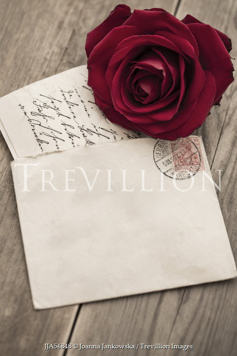 Joanna Jankowska ROSE WITH LOVE LETTER Miscellaneous Objects